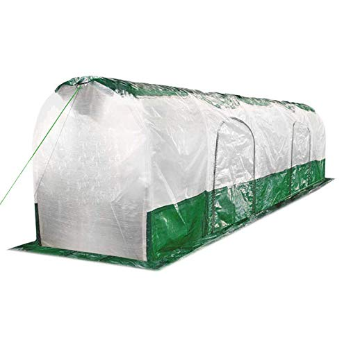 Bio Green SD300 Super Dome Tunnel de Protection Vert Transparent, Maron