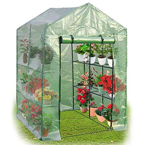 COSTWAY Serre de Jardin Tente de Plante avec 1 Porte Tissu de PE + Fer 143 x 143 x 195 cm Verte