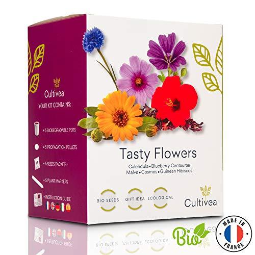 Cultivea Mini – Kit Prêt à Pousser – Graines 100% biologiques – Jardinez et dégustez – Idée cadeau (Barbecue) (Romarin…