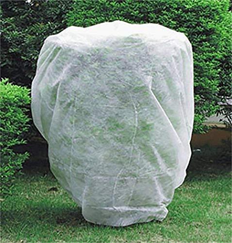 DOMDIL Housse de protection pour plantes en volière d'hiver pour plantes 30 g/m² Env. 1,20 x 1,80 m