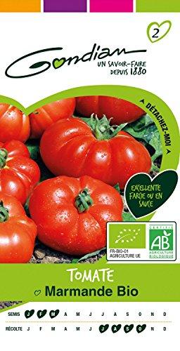 Gondian 512454 Semences – Tomate Marmande Bio – CP 2 Rouge, 1×8.1×16 cm