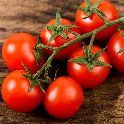Tomate Unique (Cerise)