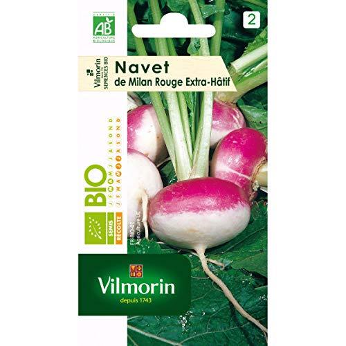 Vilmorin – Sachet graines Navet de milan rouge extra Hatif à chassis BIO