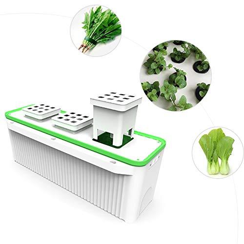 ZDYLM-Y Kit de Culture Hydroponique avec Pompe intégrée et Rappel d'alarme de Manque d'eau Intelligent, jardinière à arrosage Automatique