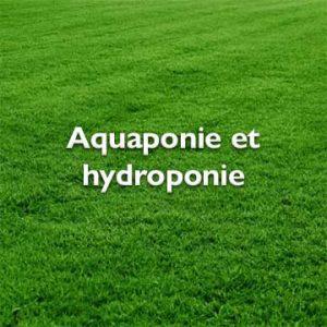 Aquaponie et hydroponie